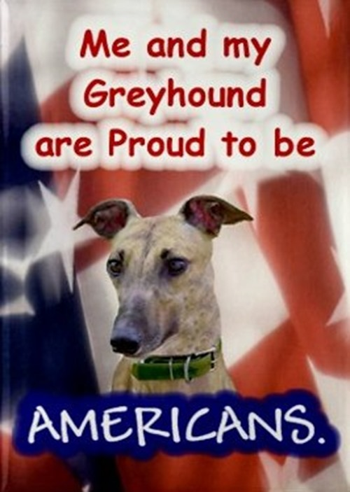 Greyhound 4th of July