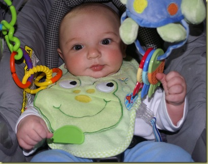 Lime Baby Bib