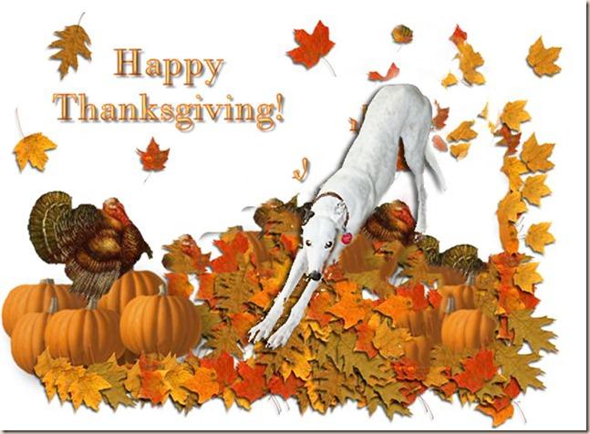 Thanksgiving Renner